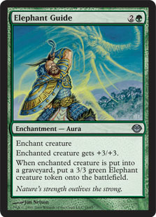 Elephant Guide_boxshot