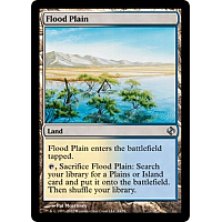 Flood Plain