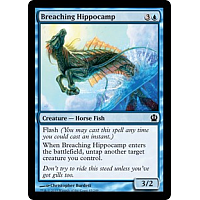 Breaching Hippocamp