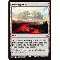 Evolving Wilds (DTK Dragonfury Game promo)