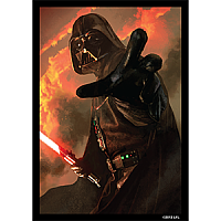 FFG - Star Wars Art Sleeves: Power of the Dark Side