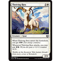 Thriving Ibex