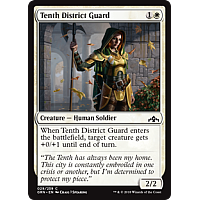 Tenth District Guard