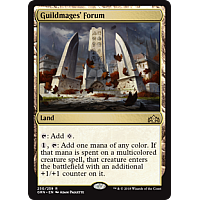 Guildmages' Forum ( Foil )