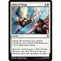 Rally of Wings